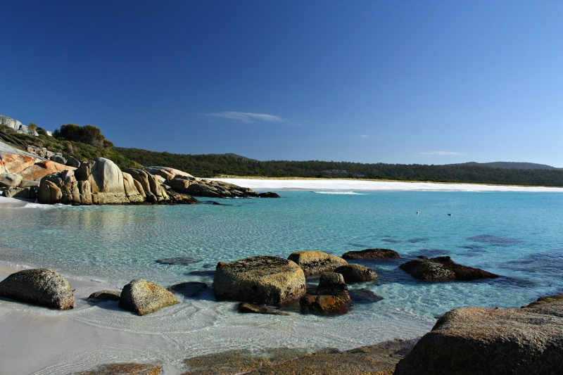 побережье Тасмании